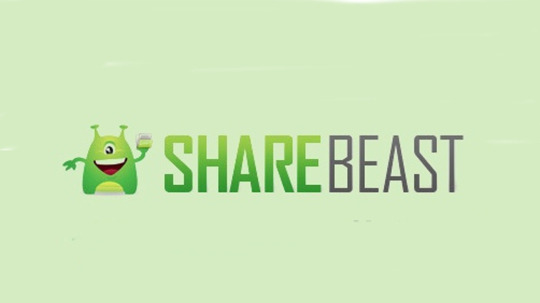 Sharebeast, Downloading, Music Download, Piracy